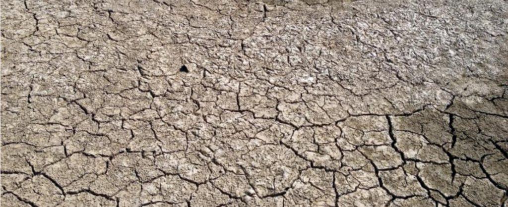 頭皮 乾燥がおこる原因と3つの対策