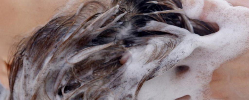 髪と頭皮が喜ぶ正しいシャンプーの方法7つのステップ