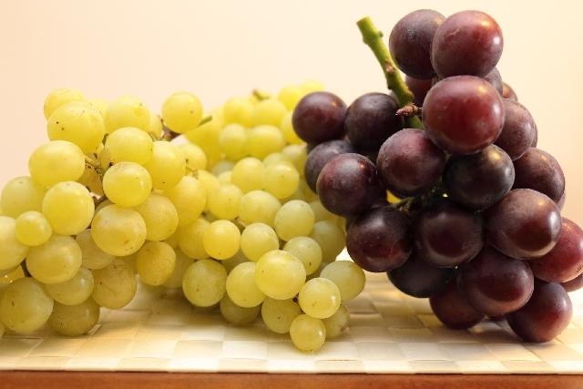 [ブドウ種子油(グレープシードオイル)]ぶどうの種子から抽出した美白成分