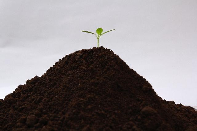 [硫酸アンモニウム(硫安)]肥料の材料が、化粧品では増粘剤として使われていた。