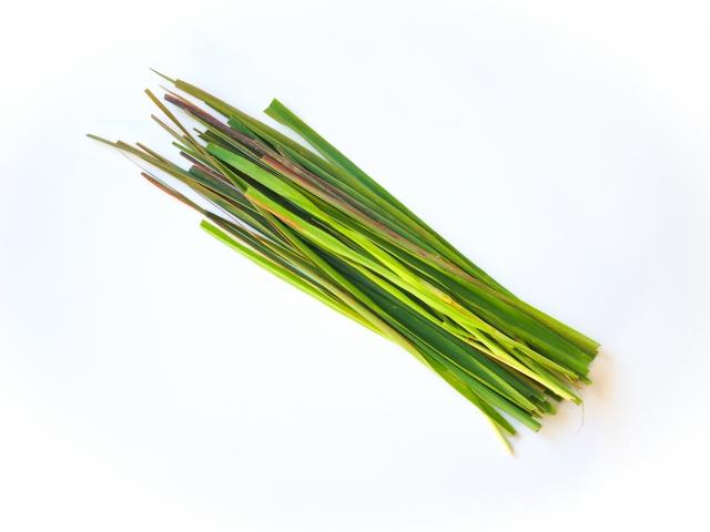 [レモングラス葉/茎エキス]アジアでポピュラーなハーブに保湿・消臭機能があった。