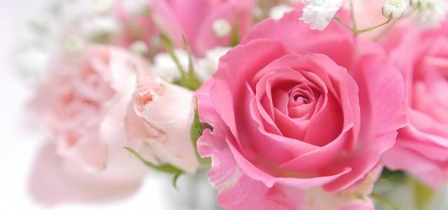 ハイブリッドローズ花エキスは抗糖化性のある成分