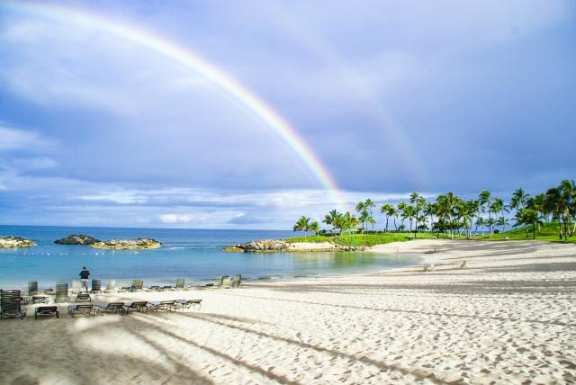 [ククイナッツ油]ハワイの日差しを防ぐ皮膚コンディショニング成分