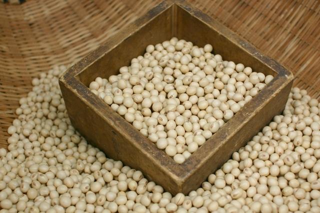 [ダイズ種子エキス]大豆から抽出した抗炎症成分