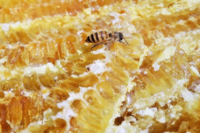 [加水分解ハチミツタンパク]はちみつを加水分解した作られるコンディショニング成分