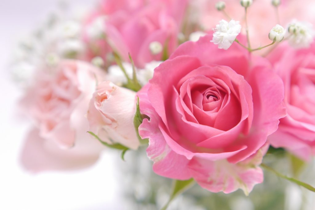 [ダマスクバラ花エキス]バラの花から抽出した濃厚な香料成分